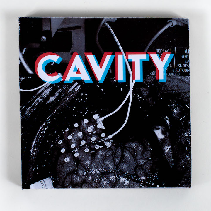 CAVITY book cover